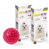 Bravecto Anti Pulgas E Carrapatos 112,5 Mg 2 A 4,5 Kg kit com 2 + brinde