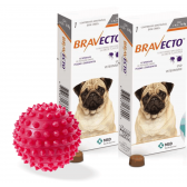 Bravecto Anti Pulgas E Carrapatos 250 Mg 4,5 A 10 Kg kit com 2 + brinde