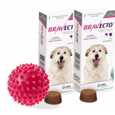 Bravecto Anti Pulgas E Carrapatos 1400 Mg 40 A 56 Kg kit com 2 + brinde